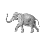 logoelephant